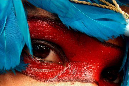 FB Amazzonia 05B